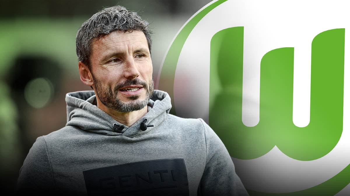 Fix! VfL Wolfsburg confirms van Bommel as the new coach - Hofland and  Frontzeck are also coming - World Today News